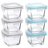 Grizzly Mini Frischhaltedosen Glas 6 Stück Set quadratisch 160 ml Baby Vorratsdosen mit Deckel